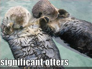#13. significant otters